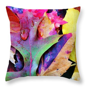 Throw Pillow featuring the photograph Primary Colors Of Fall by Judy Palkimas