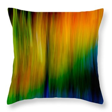 Primary Rainbow Throw Pillow