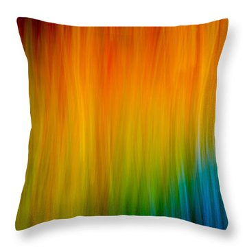 Throw Pillow featuring the photograph Primary Rainbow by Darryl Dalton