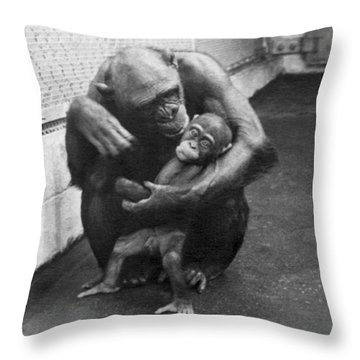 Primate Discipline Throw Pillow