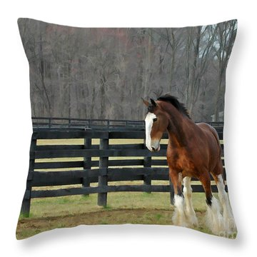 Throw Pillow featuring the photograph Prince Charming by Sami Martin
