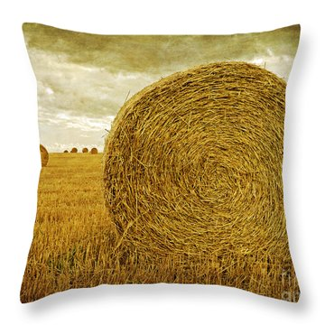 Prince Edward Island Pastoral Farm Fields Throw Pillow by Edward Fielding