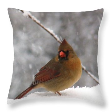 Princess In The Snow Throw Pillow