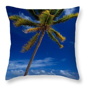 Pristine Tropical Beach  Throw Pillow