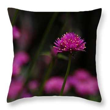 Pretty In Pink Throw Pillow by Yvonne Wright