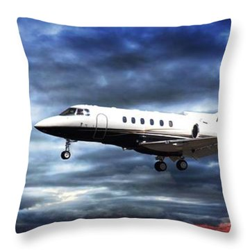 Throw Pillow featuring the photograph Private Business by Aaron Berg
