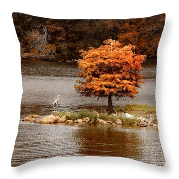Private Island Throw Pillow by Jai Johnson