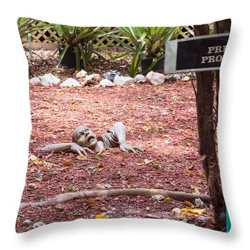 Throw Pillow featuring the photograph Private Property by John M Bailey