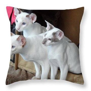 Prize Winning Triplets Throw Pillow