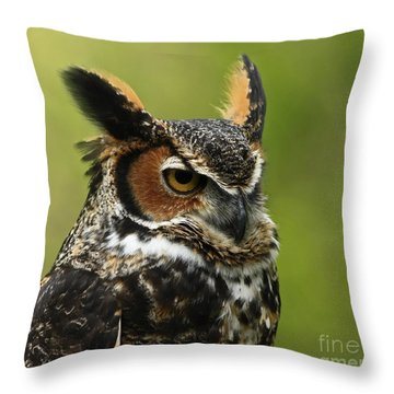 Profile Of A Great Horned Owl Throw Pillow by Inspired Nature Photography Fine Art Photography