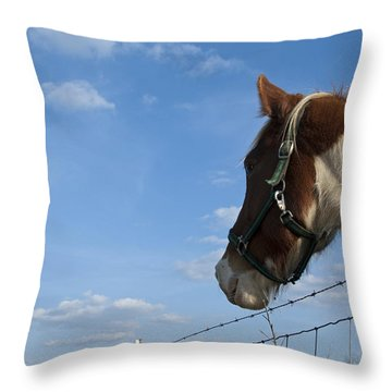 Throw Pillow featuring the photograph Profile Of A Horse by Charles Beeler