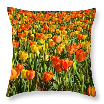 Profusion Of Tulips Biltmore Estate Nc Throw Pillow