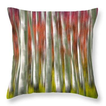 Progression Of Autumn Throw Pillow by Adam Romanowicz
