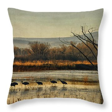 Throw Pillow featuring the photograph Promenade Of The Cranes by Priscilla Burgers
