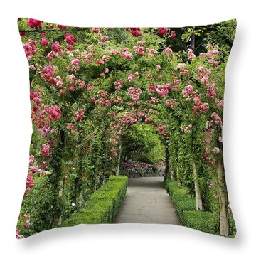 Throw Pillow featuring the photograph Rose Promenade   by Natalie Ortiz