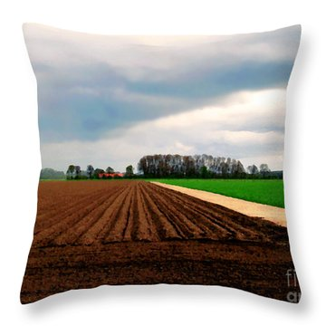 Throw Pillow featuring the photograph Promissing Field by Luc Van de Steeg
