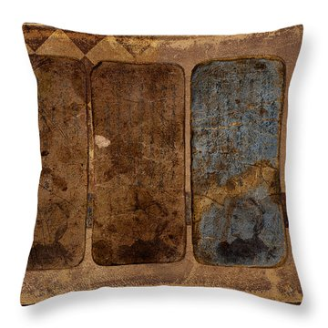 Proof Xiv Throw Pillow by Carol Leigh