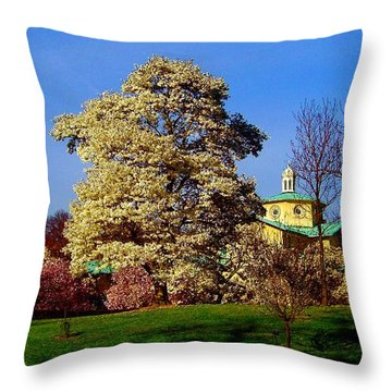 Prospect Park In Brooklyn II Throw Pillow