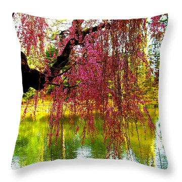 Prospect Park In Brooklyn Throw Pillow