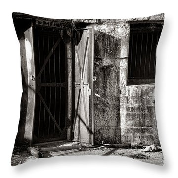 Protected Throw Pillow by Olivier Le Queinec
