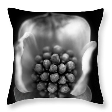 Protected Throw Pillow by Shane Holsclaw