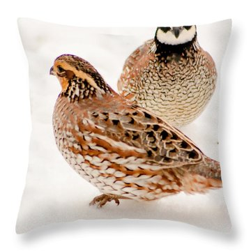 Protective Quail Throw Pillow