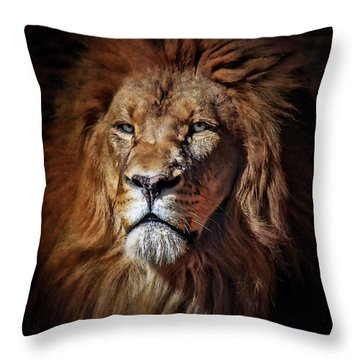 Proud N Powerful Throw Pillow