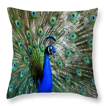 Proud Peacock Throw Pillow by Laurel Powell
