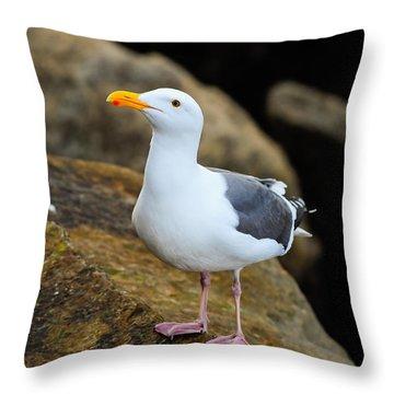 Proud Seagull Throw Pillow