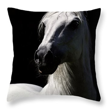 Proud Stallion Throw Pillow