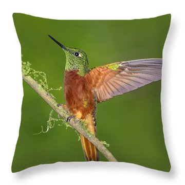 Proud Throw Pillow by Tony Beck