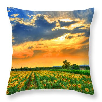 Provence Lights Throw Pillow by Midori Chan