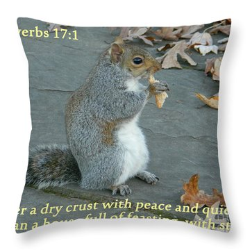Proverbs 17-1 Throw Pillow