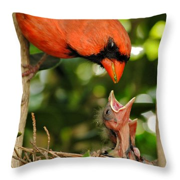 Provider Throw Pillow