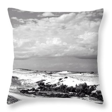 Provincelands 2014 Throw Pillow