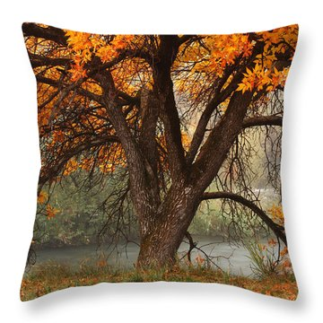 Provo Autumn #1 Throw Pillow