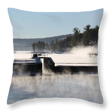 Winter  Pine River Pond  Throw Pillow
