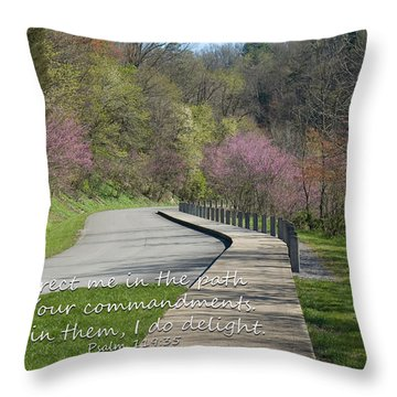 Psalm 119 Direct Me In The Path Throw Pillow
