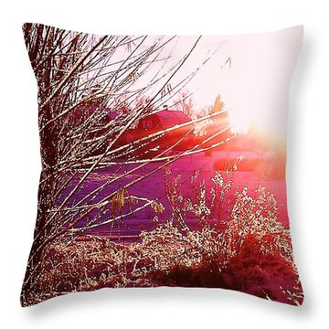 Throw Pillow featuring the photograph Psychedelic Winter   by Martin Howard