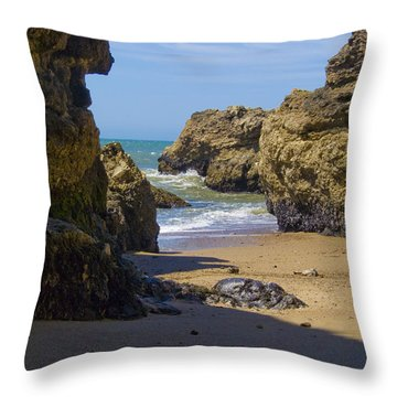 Pt Reyes National Seashore Throw Pillow by Bill Gallagher