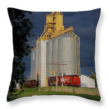 Puddle Elevator Throw Pillow