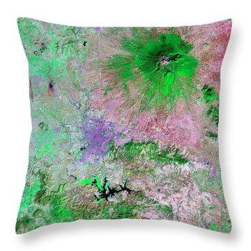 Puebla Throw Pillows