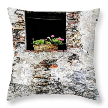 Puebla Window Flowers Throw Pillow