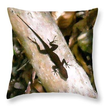 Throw Pillow featuring the photograph Puerto Rico Lizard by Daniel Sheldon