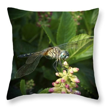 Puff Throw Pillow