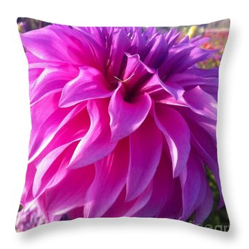 Puff Of Pink Dahlia Throw Pillow by Susan Garren