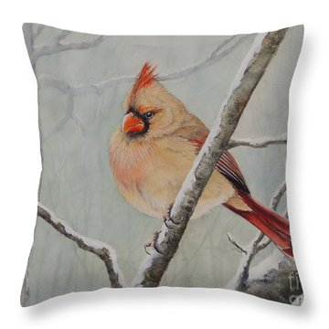 Puffed Up For Winters Wind Throw Pillow