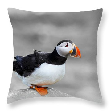 Puffin Bokeh Throw Pillow
