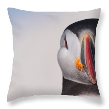 Puffin Mug Shot Throw Pillow by Bruce J Robinson