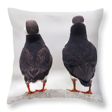 Puffin Philosophers Throw Pillow
